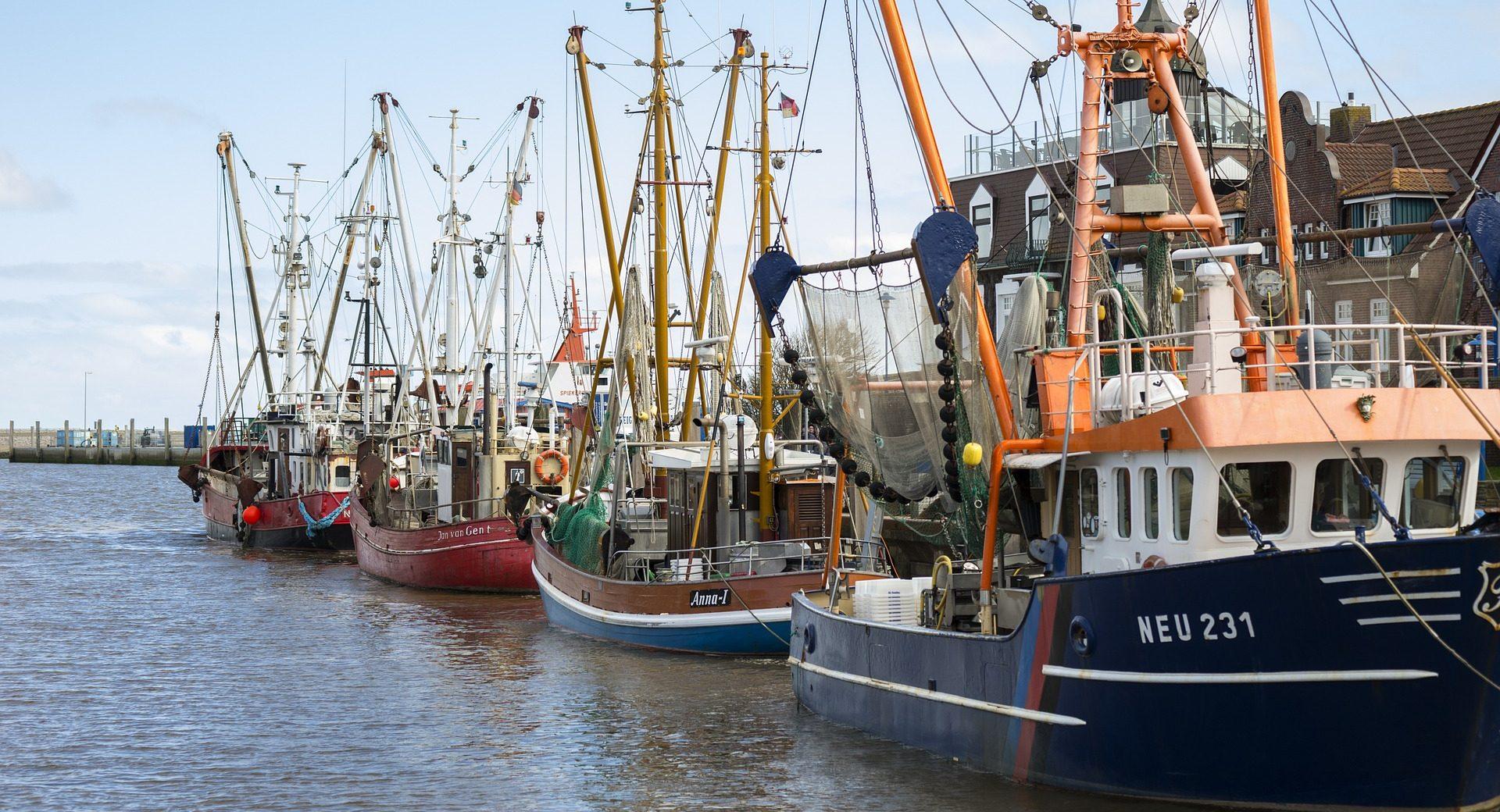 fisherman-732037_1920