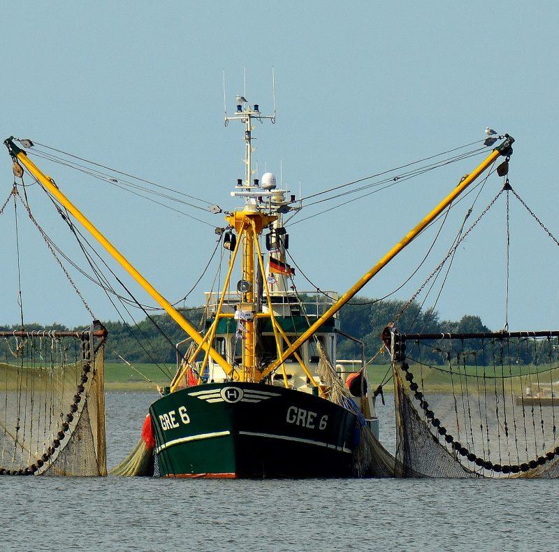 fishing-boat-2645137_1920